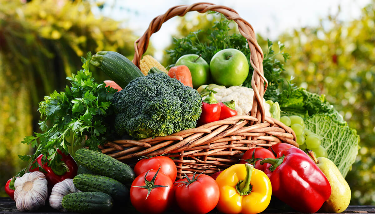 Green Vegetables – What Are Their Major Advantages?